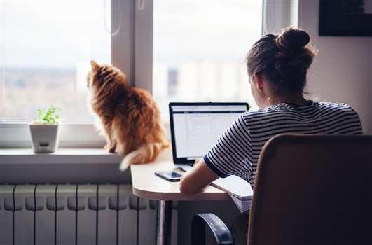 Praca zdalna – efektywna organizacja pracy poza siedzibą firmy